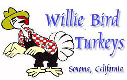 Willie bird Turkeys